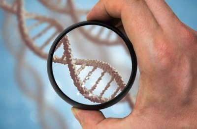 DNA Testing in Illinois Paternity Suits